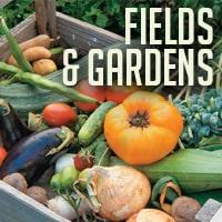 fieldsandgardens